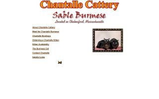 Chantalle Cattery