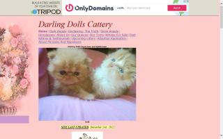 Darling Dolls Cattery