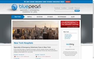 NYC Veterinary Specialists