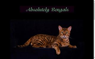 Absolutely Bengals