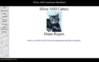 Silver ASH Cattery