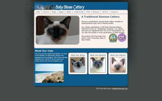 Baby Blues Cattery