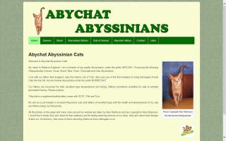 Abychat Abyssinians