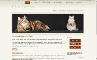 Cica Cattery