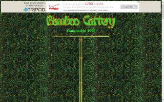 Bamboo Cattery