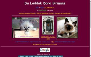 Du Laddak Doré Birmans