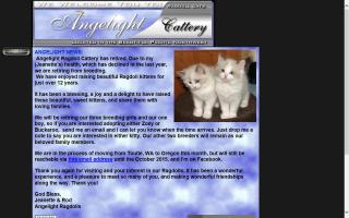 Angelight Ragdolls
