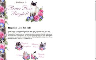 Brier Rose Ragdolls