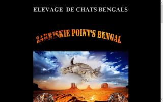Zabriskie Point's Bengal