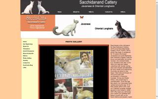 Sacchi-Cats / Sacchidanand Cattery