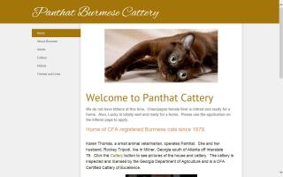 Panthat Cattery