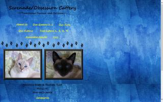Serenade/Obsession Cattery