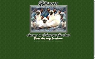 Tyjunsee Siamese & Colorpoint Shorthair