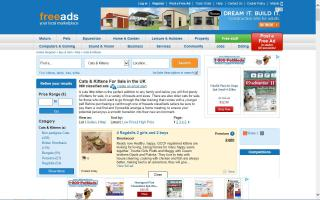 Freeads Cats For Sale