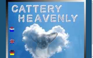Cattery Heavenly