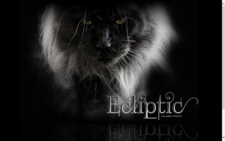 Ecliptic Maine Coons