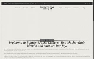 Beauty Tracks Cattery
