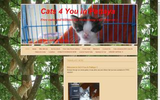 Cats 4 You in Pattaya