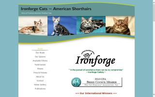 Ironforge Cats