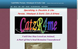 CatzR4Me Persian, Himalayan & Exotic Cats