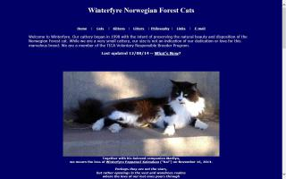 Winterfyre Cattery