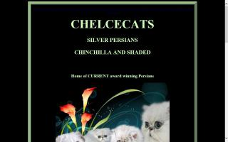 Chelcecats Silver Persians