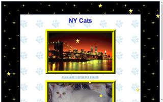 monroe county pennsylvania cat directory and kittens for