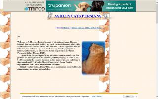 Ashleycats Persians
