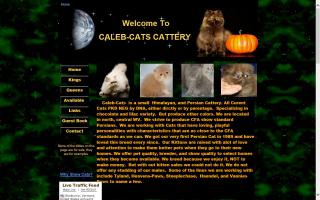 Caleb-Cats Cattery