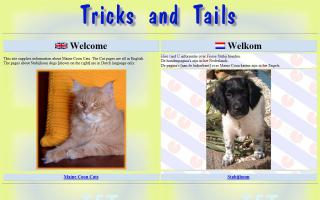 Tricks and Tails Maine Coons