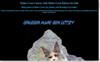 Congocoon Cattery