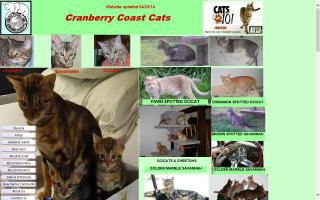 Cranberry Coast Cats
