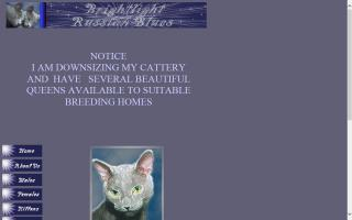 Brightlight Russian Blue Cattery