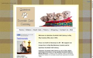 Quietimes Scottish Fold Cattery