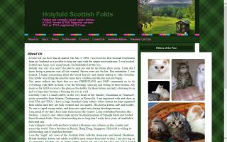 HolyFold Cattery