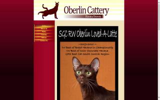 Oberlin Cattery