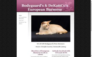 Bodyguard's & DeKattCo's European Burmese