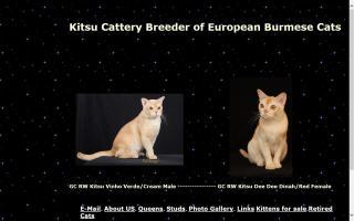 Kitsu Cattery
