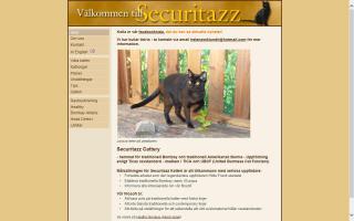Securitazz Katteri