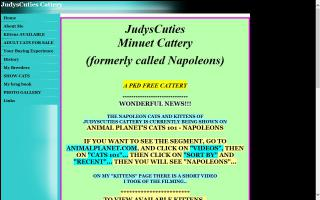 JudysCuties Cattery