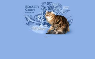 Rossity Cattery