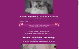 Nikarl Siberian Cats / Cherished Images Portraits