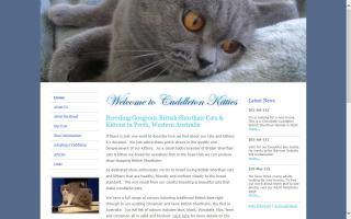 Cuddleton Kitties