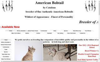 Catalons American Bobtails