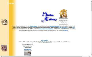 Miribu Cattery