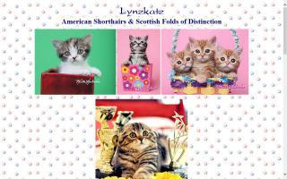 Lynzkatz Cattery