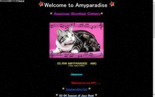 Amyparadise