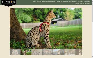 Savannah International Member & Breeder Association - SIMBA