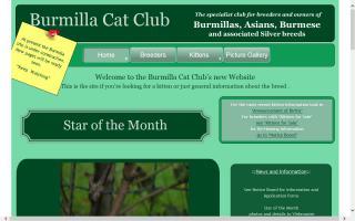 Burmilla Cat Club, The - BCC