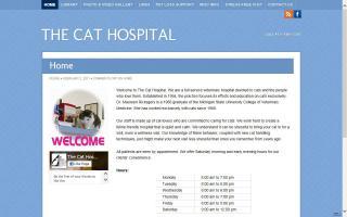 Cat Hospital, The